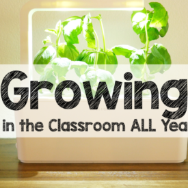 Growing Plants in the Classroom…The FUN Way!