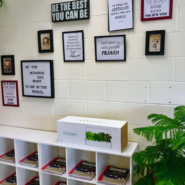 Click and Grow: The Perfect Classroom Growing System